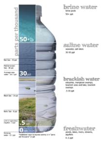 Salinity in ppt (https://en.wikipedia.org/wiki/Salinity)